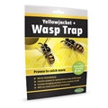 Picture for category Wasp Traps